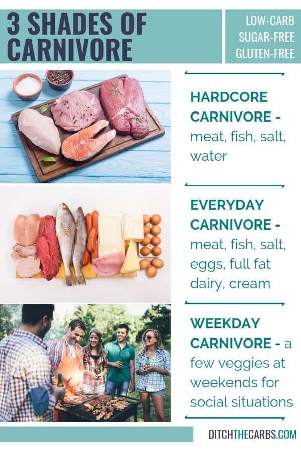 Carnivore Diet The Empire