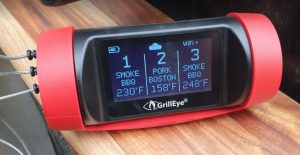 GrillEye Temperature Probe